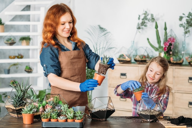 Diy florarium. rodzinny biznes i hobby. matka i córka sadzą sukulenty w szklanych wazonach o geometrycznym kształcie.