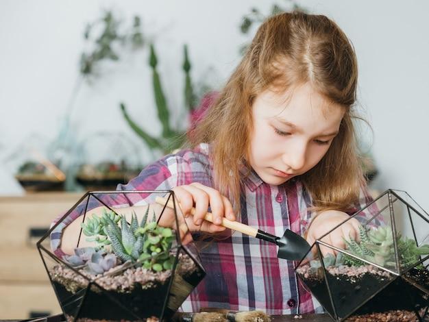 Diy florarium. twórcze hobby. dziewczyna rośnie sukulenty w szklanych wazonach geometrycznych. rozmycie tła wnętrza.