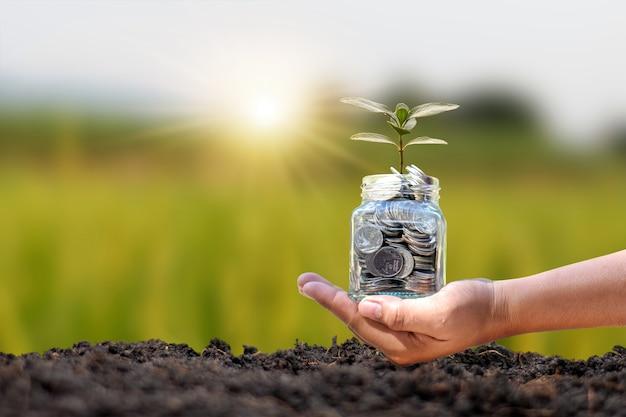 Dłoń trzymająca butelkę pieniędzy z drzewem do sadzenia w glebie, sadzenie koncepcji lasu i ochrona środowiska.