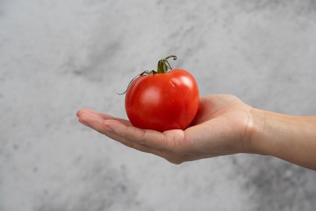 Dłoń trzymająca świeży czerwony pomidor na tle marmuru.