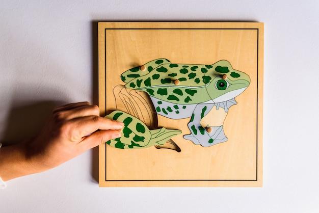 Dłonie dziecka uczące się dopasowywać elementy w puzzle drewniane zwierząt 3d.