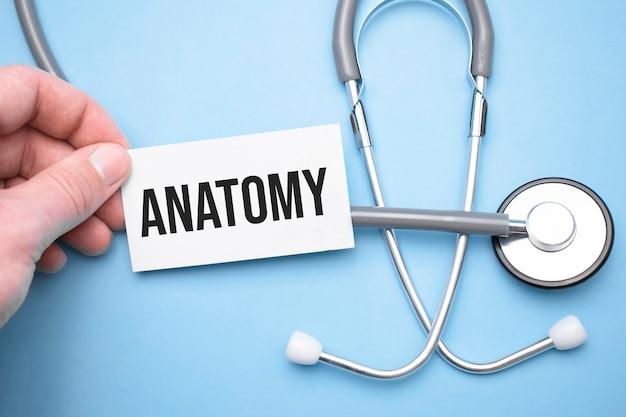 Dłonie lekarza jedną ręką trzyma wizytówkę z tekstem anatomii, a drugą wskazuje na tekst.