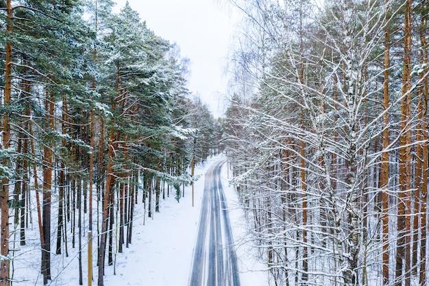 Długa droga otoczona wysokimi drzewami pokrytymi zimą śniegiem