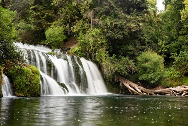 Długa ekspozycja wodospadu w lesie tropikalnym, wyspa jeju w korei południowej