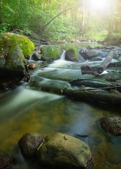 Długi czas ekspozycji jedwabisty strumień wody biegnący przez górskie skały w lesie