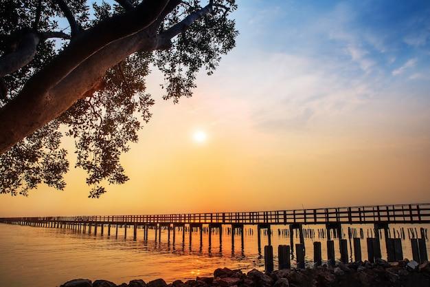 Długi Rewolucjonistka Mosta światła Słonecznego Nieba Drzewo Przy Plażowym Morzem, Rewolucjonistka Bridżowy Samut Sakhon Tajlandia Premium Zdjęcia