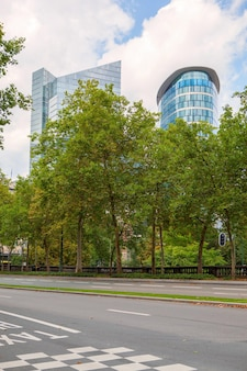 Długi rząd drzew wzdłuż ścieżki w parku w brukseli, belgia