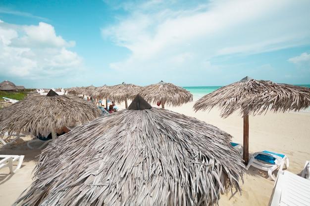 Długi strzał palmowy parasol przy kurort plażą