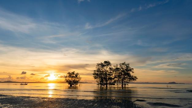 Długi ujawnienie wizerunek dramatyczny zmierzch, wschodu słońca niebo i chmury nad górą z drzewami w morzu