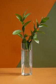 Długi wąski szklany wazon z zieloną rośliną domową stojącą na brązowym stole na dwukolorowej ścianie w studio projektowania lub w pokoju domowym