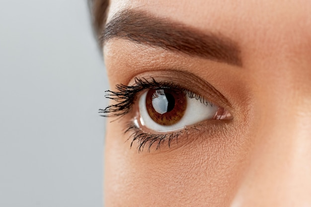 Długie, czarne rzęsy. zbliżenie piękne kobiece brwi i duże oko z fałszywymi rzęsami. kobieta z miękką gładką zdrową skórę i wspaniały profesjonalny makijaż twarzy.