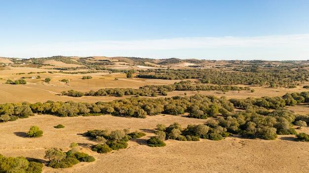 Długie ujęcie pięknej równiny i lasu zrobionego przez drona