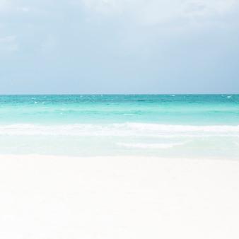 Długie ujęcie tropikalnej piaszczystej plaży