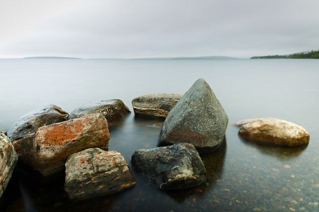 Dno skalne w czystej wodzie morskiej. nieostrość