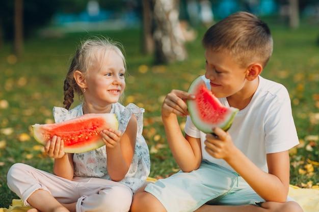Do uroczych dzieciaków mały chłopiec i dziewczynka jedzą soczystego arbuza na pikniku na jesiennej łące w parku