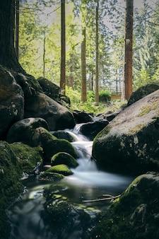 Dobry widok na park narodowy wicklow mountain