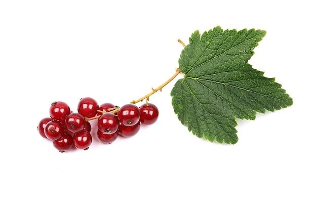 Dojrzała czerwona porzeczka z liśćmi na białym tle