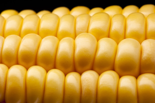 Dojrzała kukurydza na kolbie