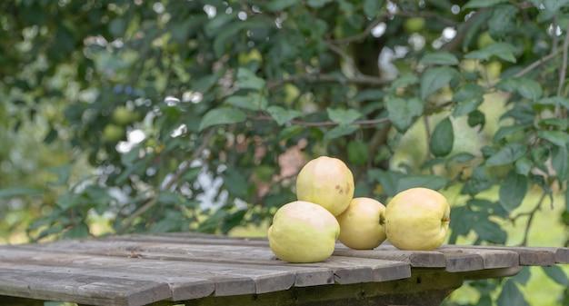Dojrzałe jabłka na stole w ogrodzie, zbliżenie