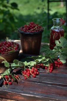 Dojrzałe jagody czerwonej porzeczki na drewnianym stole w ogrodzie, słoneczny letni dzień, z bliska.