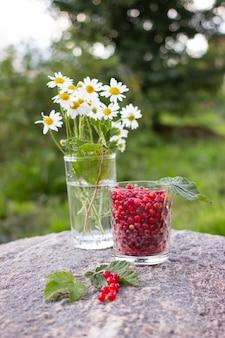 Dojrzałe jagody czerwonej porzeczki w szklanym kubku na kamieniu na zewnątrz w ogrodzie z zielonymi liśćmi
