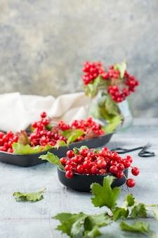 Dojrzałe jagody kaliny z liśćmi w misce i gałęziami kaliny na podłożu na stole. wellness, medycyna alternatywna i odżywianie witaminami. widok pionowy