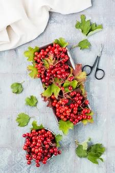 Dojrzałe jagody kaliny z liśćmi w misce i gałęziami kaliny na podłożu na stole. wellness, medycyna alternatywna i odżywianie witaminami. widok z góry i z pionu