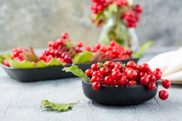 Dojrzałe jagody kaliny z liśćmi w misce i gałęziami kaliny na podłożu na stole. wellness, medycyna alternatywna i odżywianie witaminami. zbliżenie