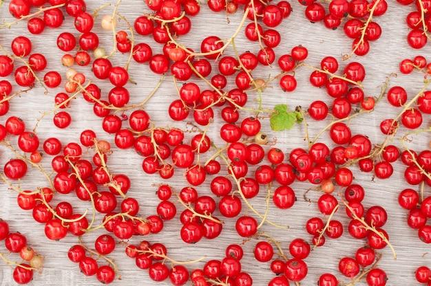 Dojrzałe jagody porzeczki czerwone tło. zobacz tp