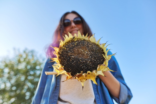 Dojrzałe koło słonecznika roślin z czarnymi nasionami w ręku