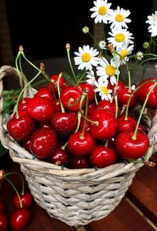 Dojrzałe soczyste czerwone wiśnie zbliżenie w wiklinowym koszu z jesiennymi zbiorami białych stokrotek