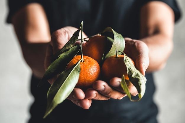 Dojrzałe, soczyste, słodkie mandarynki pomarańczowe w ludzkiej dłoni