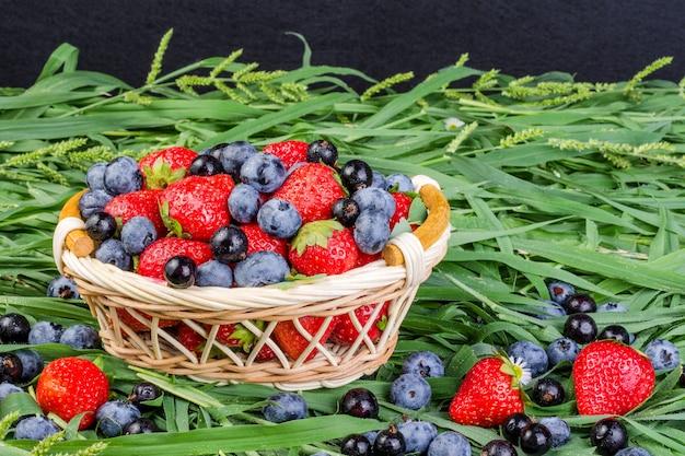 Dojrzałe truskawki, jagody i czarna porzeczka w wiklinowym koszu na trawie.