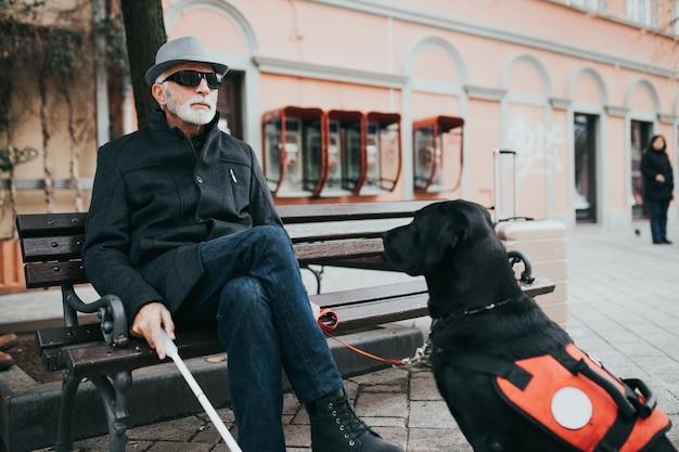 Dojrzały niewidomy z psem przewodnikiem, siedząc na ławce.