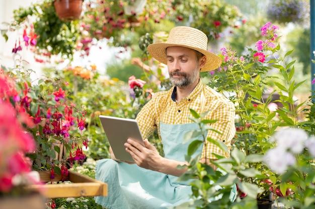 Dojrzały ogrodnik w kapeluszu i ubraniu roboczym siedzi wśród kwitnących kwiatów i surfuje po sieci w poszukiwaniu informacji