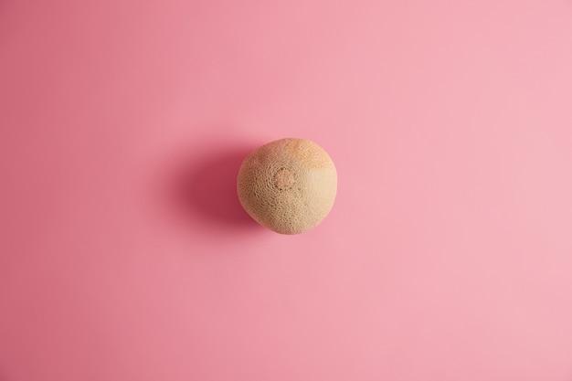 Dojrzały okrągły świeży melon na białym tle na różowym tle. kanatalupa do jedzenia. naturalne organiczne dojrzałe owoce latem zawierają witaminy, błonnik może wspierać zdrowie serca. pyszna przekąska. koncepcja superfood