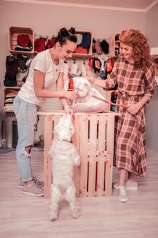 Dołączam do przyjaciela. rudowłosa kędzierzawa kobieta w koszuli w kratę dołącza do przyjaciółki podczas zabawy z psami
