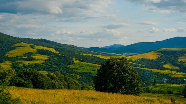 Dolina górska. naturalny krajobraz lato. poziomy transparent tło. skopiuj tło.