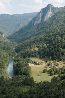 Dolina górskiej rzeki z zielonym lasem i skałami w tle. krajobraz