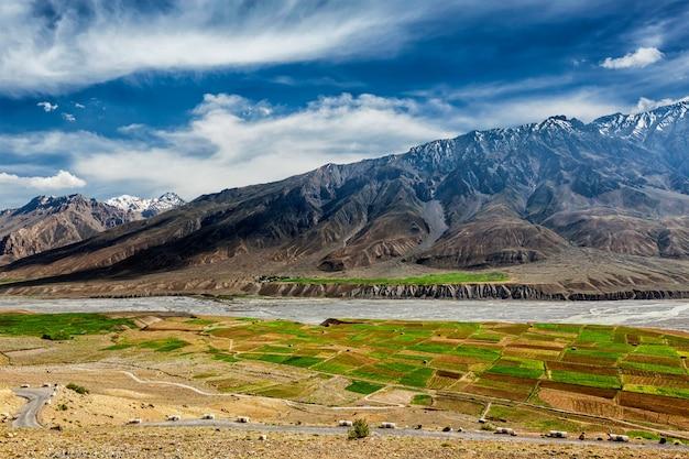 Dolina spiti i rzeka w himalajach