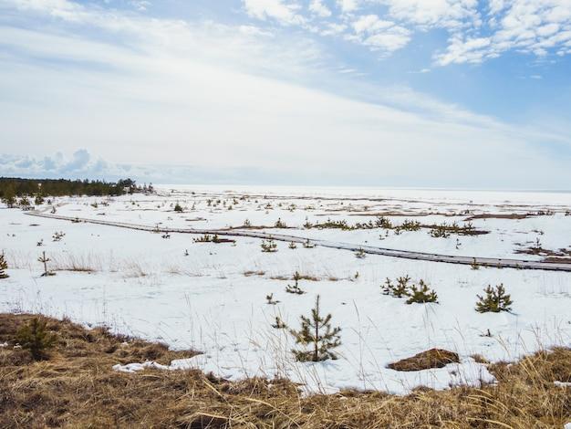 Dolina zakrywająca śniegiem pod jaskrawym niebem w zimie