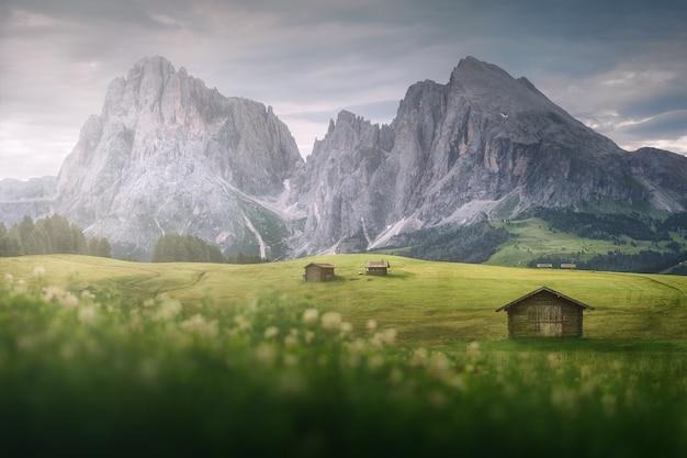 Dolomity alpe di suisi