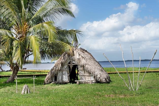 Dom kryty strzechą pod palmą na brzegu rzeki w dżungli