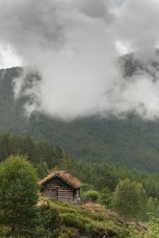 Dom na dachu z trawy, norwegia. starożytne tradycyjne drewniane chaty