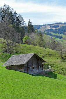 Dom na zielonej trawie z drzewnym i halnym tłem