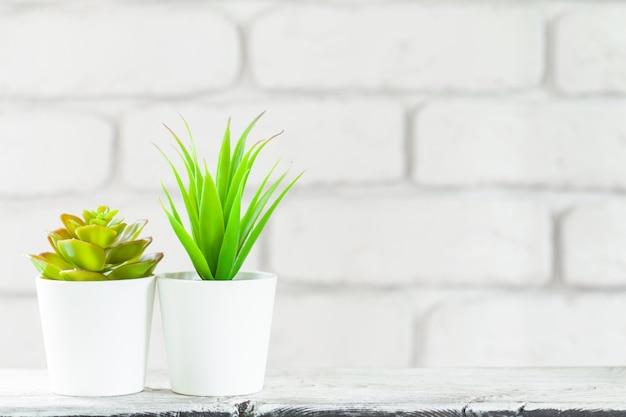 Dom rośliny w garnkach na bielu stole przy białym ściana z cegieł z przedmiotami