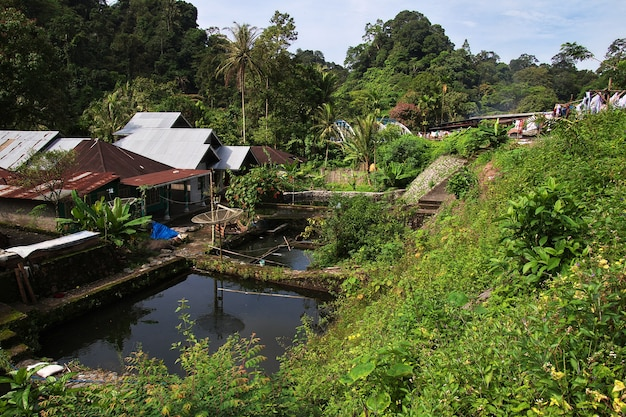 Dom w małej wiosce indonezji