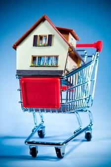 Dom w wózek na zakupy na błękitnej ścianie