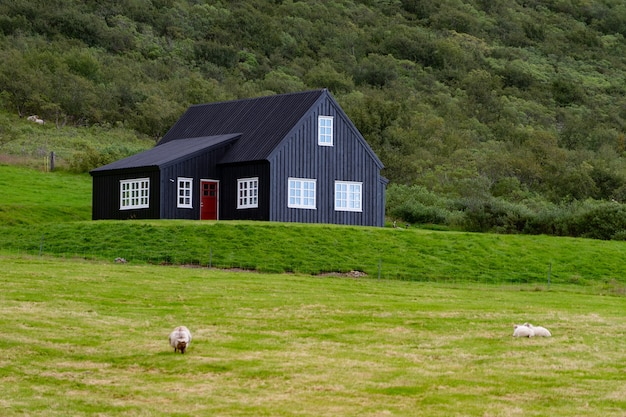 Dom wiejski na wzgórzu w islandii z zielonym polem