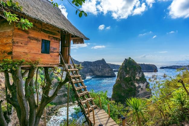 Domek na drzewie i diamentowa plaża na wyspie nusa penida, bali w indonezji